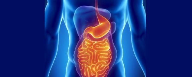 upper gastroenterology